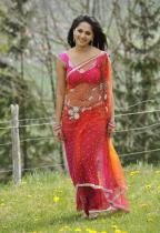thumbs anushka hot pics in saree 3 Anushka Hot Pics in saree Damarukam Movie