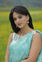 thumbs anushka hot pics in saree 9 Anushka Hot Pics in saree Damarukam Movie