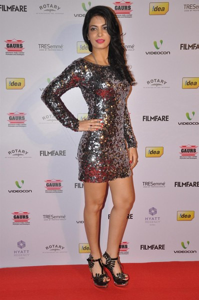 celebs hot photos at 58th idea filmfare nomination party 10 Celebs Hot Photos at 58th IDEA Filmfare Nominations