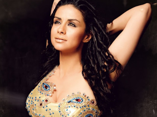 gul panag hot photos 07 Gul Panag Hot Photos