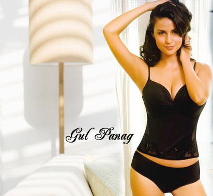 gul panag hot photos 10 Gul Panag Hot Photos