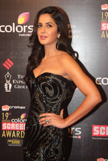 katrina-kaif-at-19th-annual-colors-screen-awards-3