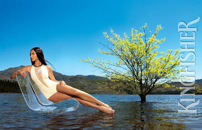 kingfisher-2013-calender-9