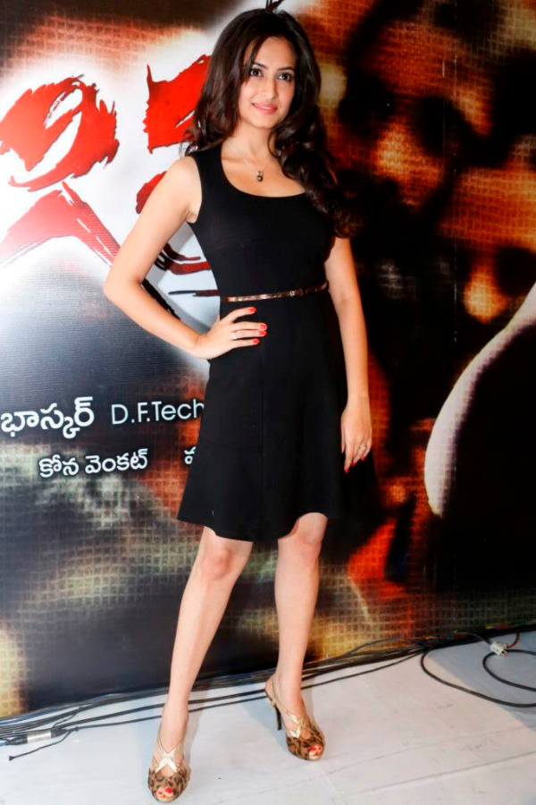 kriti kharbhanda at ongole gitta audio 10 Kriti Kharbhanda Hot Photos at Ongole Gitta Audio