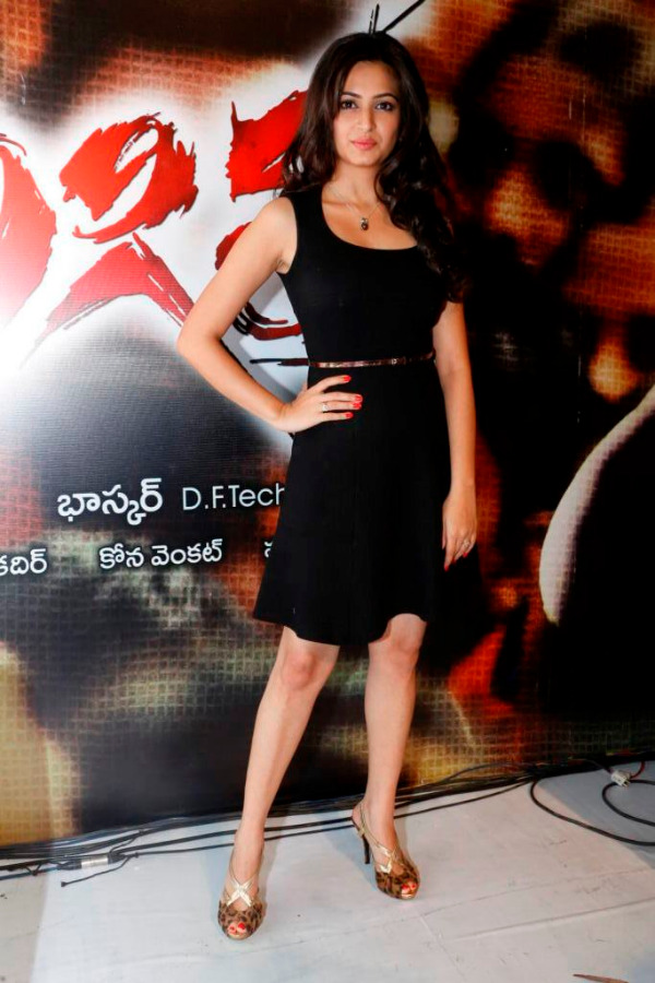 kriti kharbhanda at ongole gitta audio 11 Kriti Kharbhanda Hot Photos at Ongole Gitta Audio