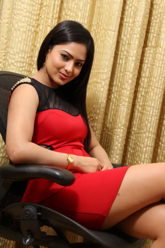 nikesha patel hot gallery telugunow com 01 Nikesha Patel Hot Photos Gallery
