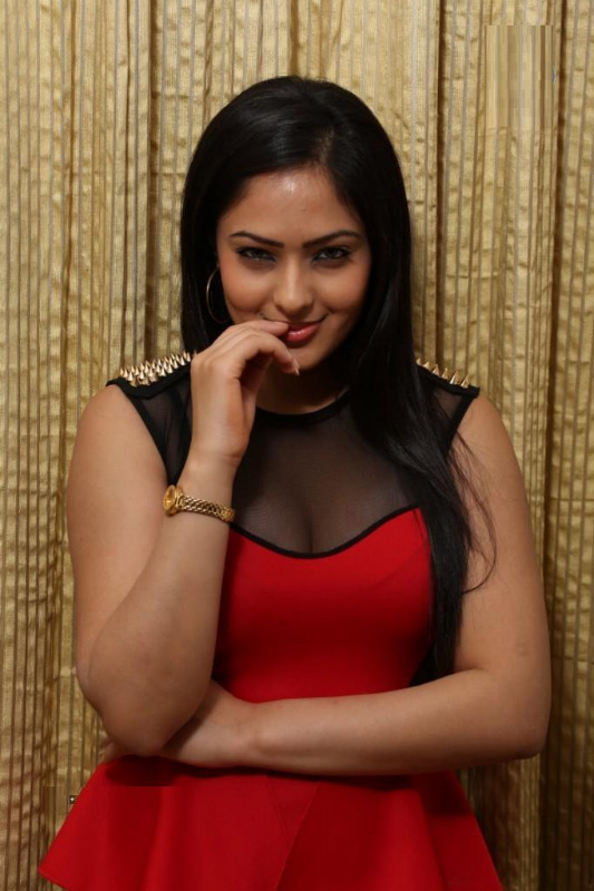 nikesha patel hot gallery telugunow com 10 Nikesha Patel Hot Photos Gallery