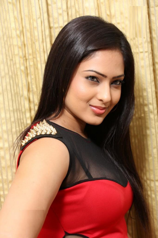 nikesha patel hot gallery telugunow com 11 Nikesha Patel Hot Photos Gallery