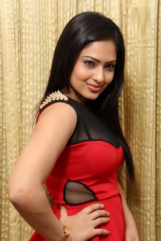 nikesha patel hot gallery telugunow com 12 Nikesha Patel Hot Photos Gallery