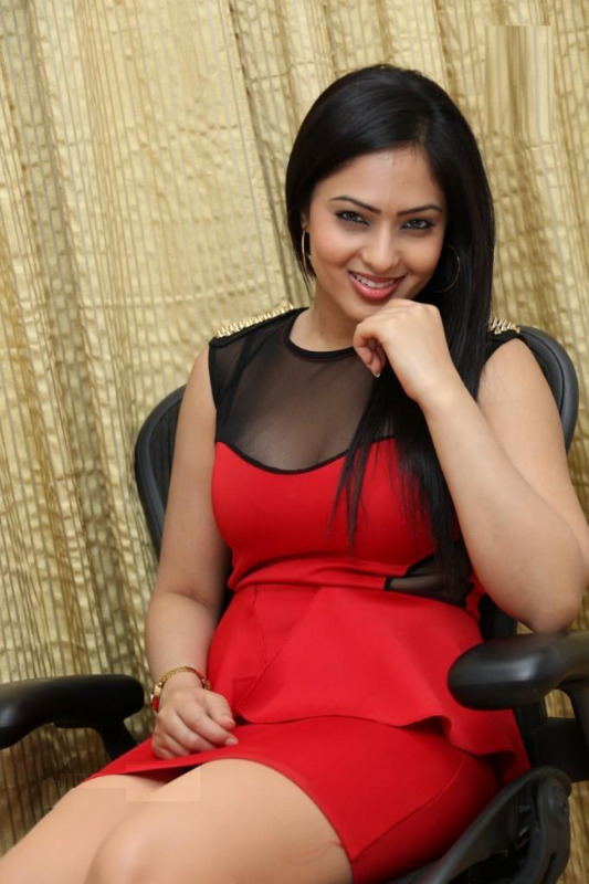 nikesha patel hot gallery telugunow com 19 Nikesha Patel Hot Photos Gallery