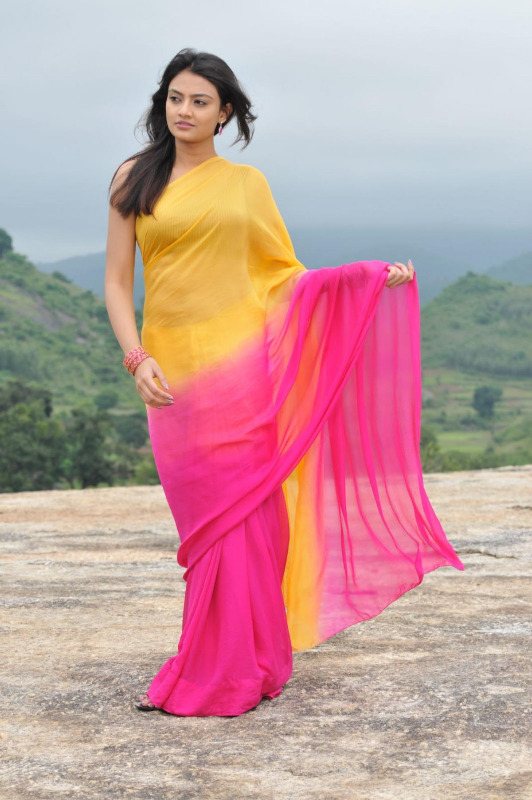 nikitha narayan spicy stills in saree 4 Nikitha Narayan Hot Stills In Saree