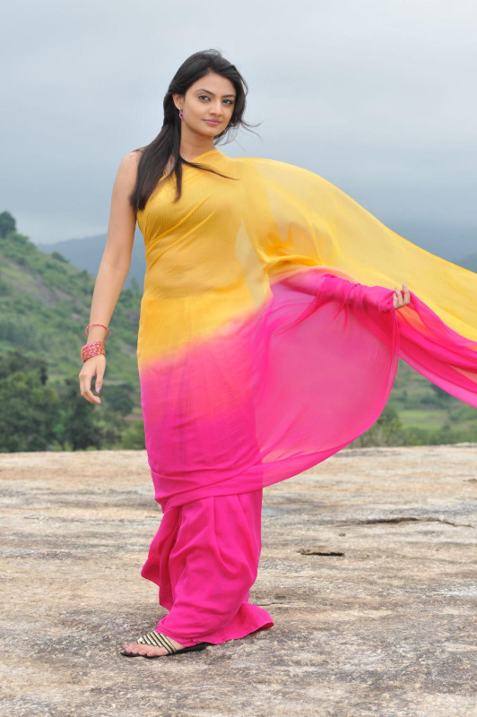 nikitha narayan spicy stills in saree 6 Nikitha Narayan Hot Stills In Saree