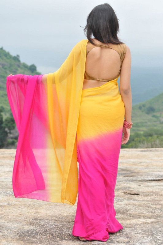 nikitha narayan spicy stills in saree 9 Nikitha Narayan Hot Stills In Saree