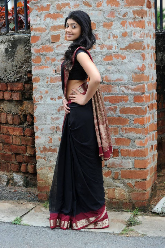 pranitha hot stills in saree 14 Pranitha Hot Stills In Saree