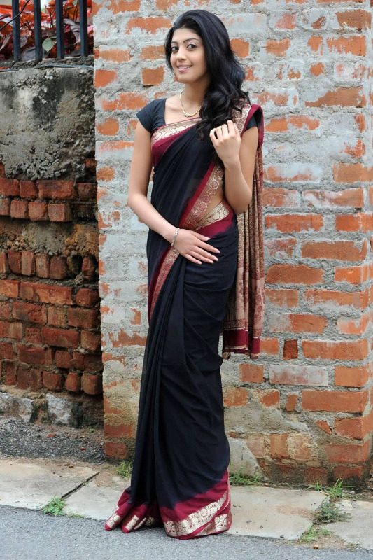 pranitha hot stills in saree 16 Pranitha Hot Stills In Saree
