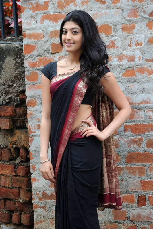 pranitha hot stills in saree 18 Pranitha Hot Stills In Saree