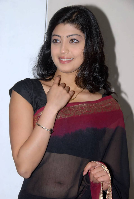pranitha hot stills in saree 3 Pranitha Hot Stills In Saree
