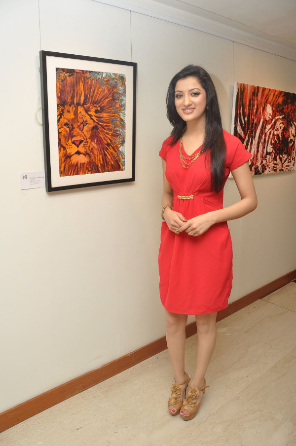 Richa Panai latest photos