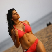 thumbs sai tamhankar hot photo shoot photos 136 Sai Tamhankar Hot Photos in Bikini