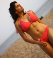 thumbs sai tamhankar hot photo shoot photos 1466 Sai Tamhankar Hot Photos in Bikini