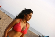 thumbs sai tamhankar hot photo shoot photos 150 Sai Tamhankar Hot Photos in Bikini