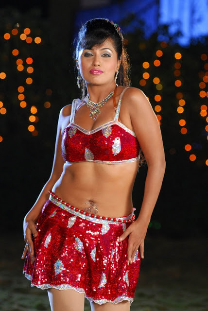 shagupta jareen hot item song photos 16 Shagupta Jareen Hot Item Song Photos