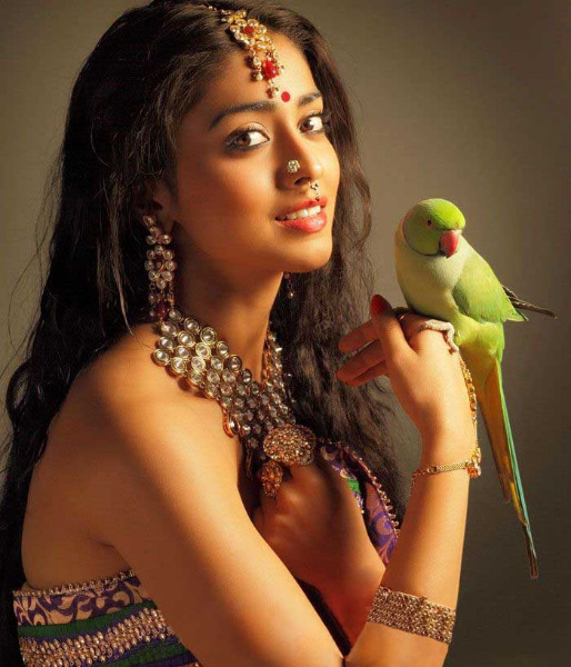 shriya latest photo gallery 7 Shriya Latest Hot Photo Gallery