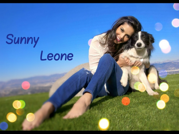 sunny leone hot wallpapers 10 Sunny Leone Latest Hot Wallpapers