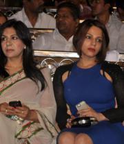nandi-awards-2013-images-11