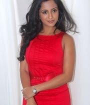 aasheeka-hot-pictures-in-red-dress-01