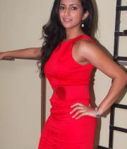aasheeka-hot-pictures-in-red-dress-04