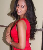 aasheeka-hot-pictures-in-red-dress-07