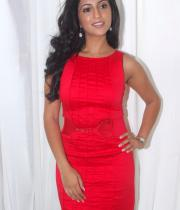 aasheeka-hot-pictures-in-red-dress-11