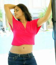 aasheeka-hot-navel-show-pictures-05
