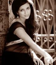 aasheeka-hot-photo-shoot-stills-in-saree-01