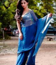 aasheeka-hot-photo-shoot-stills-in-saree-04