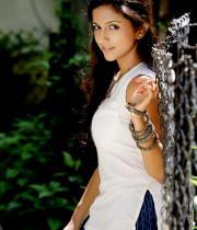 aasheeka-hot-photo-shoot-stills-in-saree-05