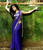aasheeka-hot-photo-shoot-stills-in-saree-17