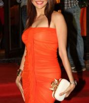 bollywood-celebs-at-farah-khan-new-store-launch-photos-104
