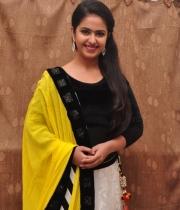 actress-avika-latest-stills-12