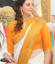 actress-nagma-latest-saree-photos-13