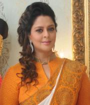 actress-nagma-latest-saree-photos-14