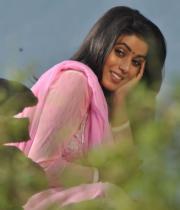 actress-actress-poorna-latest-hot-photos-03