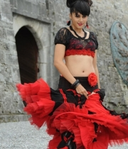actress-tapsee-latest-images-6