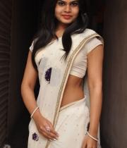 alekhya-saree-photos-11