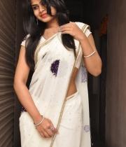 alekhya-saree-photos-20