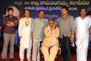 allu-rama-lingaiah-award-2012-photos-16