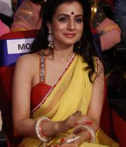 amisha-patel-saree-stills-at-tsr-awards-14