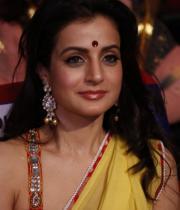amisha-patel-saree-stills-at-tsr-awards-15