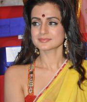 amisha-patel-saree-stills-at-tsr-awards-5